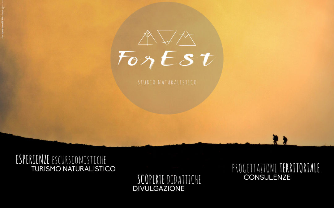 Benvenuti sul sito di ForEst!
