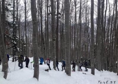 Nel bosco con le ciaspole