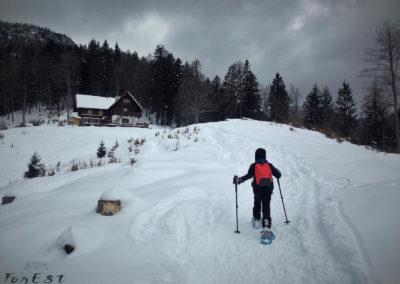 Arrivo al Rifugio Grego, Alpi Giulie, Friuli