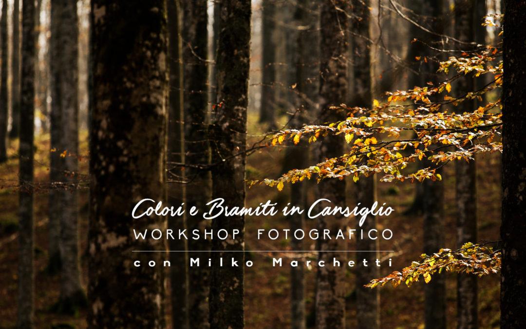 Workshop Fotografico in Cansiglio