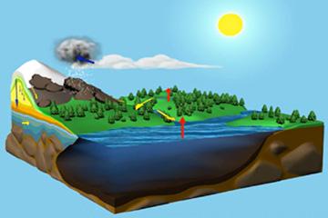 Lo schema del ciclo dell'acqua