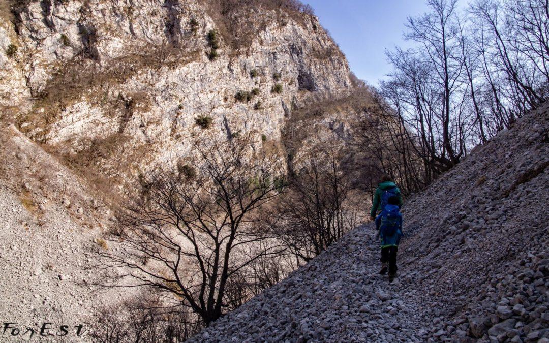 Escursione attorno al Col del Sole: Foto-racconto dell'Esperienza