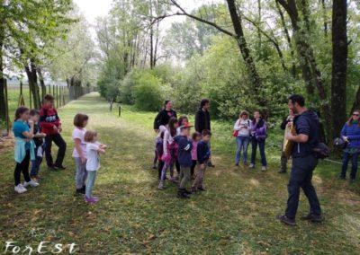 laboratorio per bambini genitori famiglie passeggiata all'oasi dei quadris