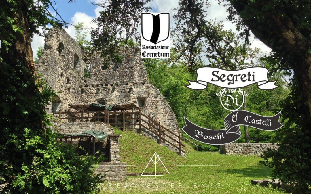 La Passeggiata dei Castellani di Cergneu: Racconto dell'Esperienza