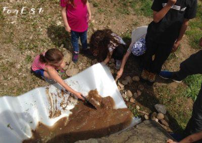 laboratorio didattico e passeggiata per bambini a santa margherita del gruagno tra le colline moreniche