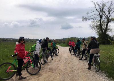Escursione guidata in bicicletta tra le colline moreniche di Fagagna e Oasi dei Quadris