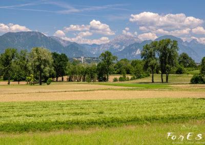 I colli di Susans e le Prealpi-Alpi Carniche