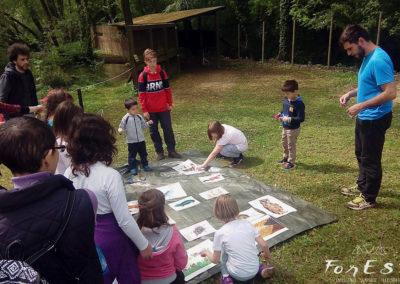 Escursione naturalistica guidata per famiglie all'Oasi dei Quadris di Fagagna