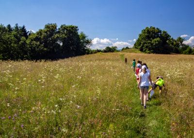 Escursione sui colli di Battaglia