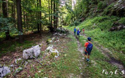 Una Domenica d'Agosto tra le Prealpi Giulie: Racconto dell'Esperienza