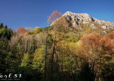 Uno sguardo al monte Cuar
