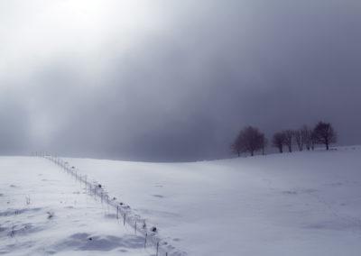 02_Febbraio 2018 - Monte dei Foresti, Cansiglio