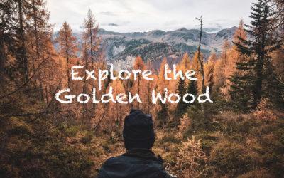 I Larici d'Oro di Festons – Racconto dell'Esperienza