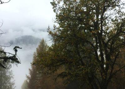 Incredibili mondi tra la nebbia