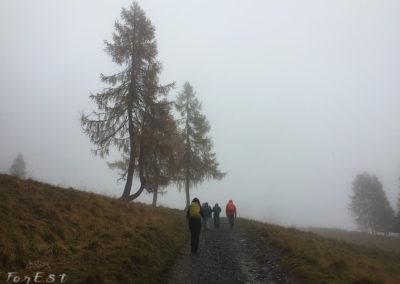 La salita nella nebbia alla Sella Festons