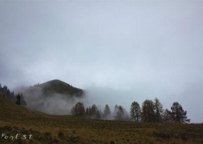Il Monte Morgenleit immerso nella nebbia
