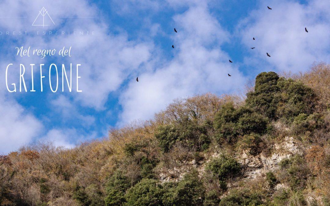 Fine anno sui balconi di Monte Prat – Racconto dell'Esperienza