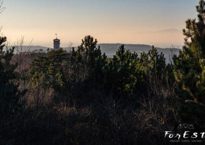 In vista della torre di Cerje