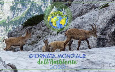 Un focus sulla Biodiversità faunistica in Friuli Venezia Giulia