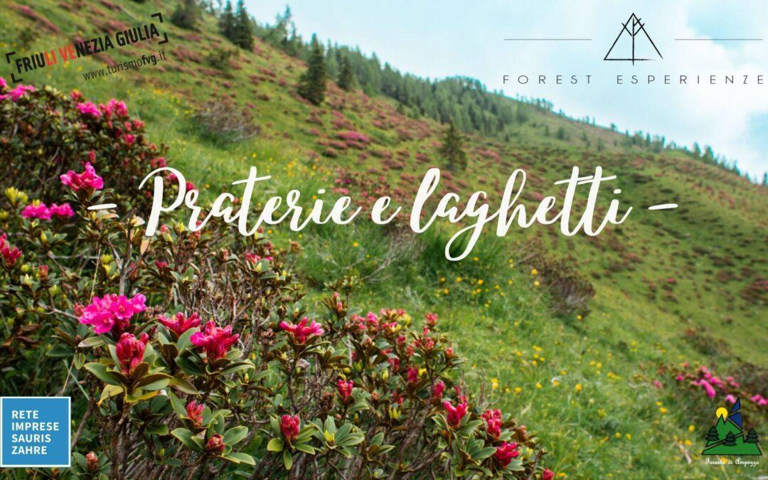 Tra praterie alpine e laghetti di Festons