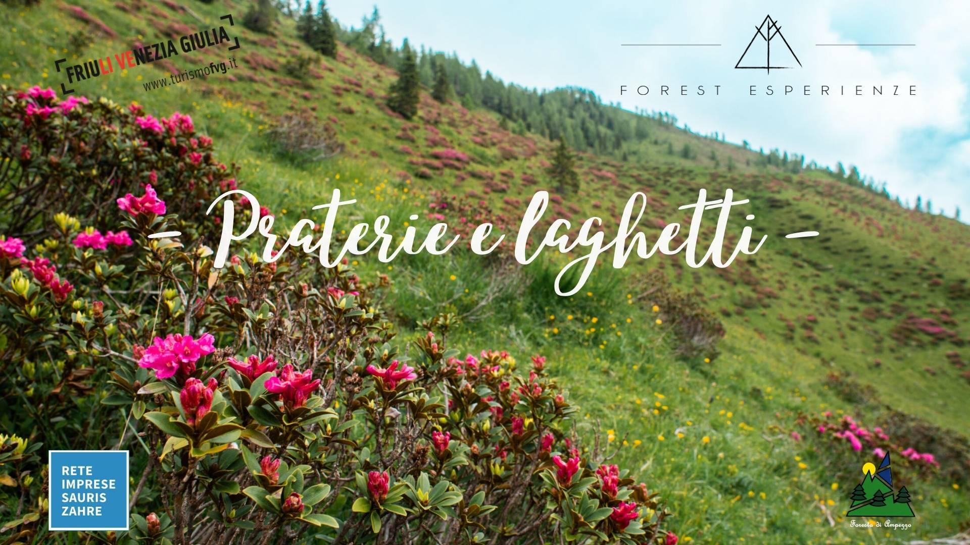 Praterie alpine e laghetti di Festons