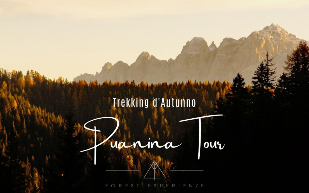 Trekking d'Autunno lungo il Puanina Tour