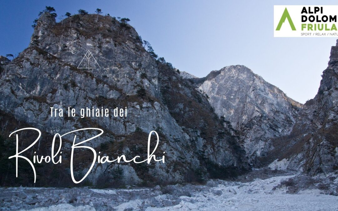 Escursione sui ghiaioni dei Rivoli Bianchi