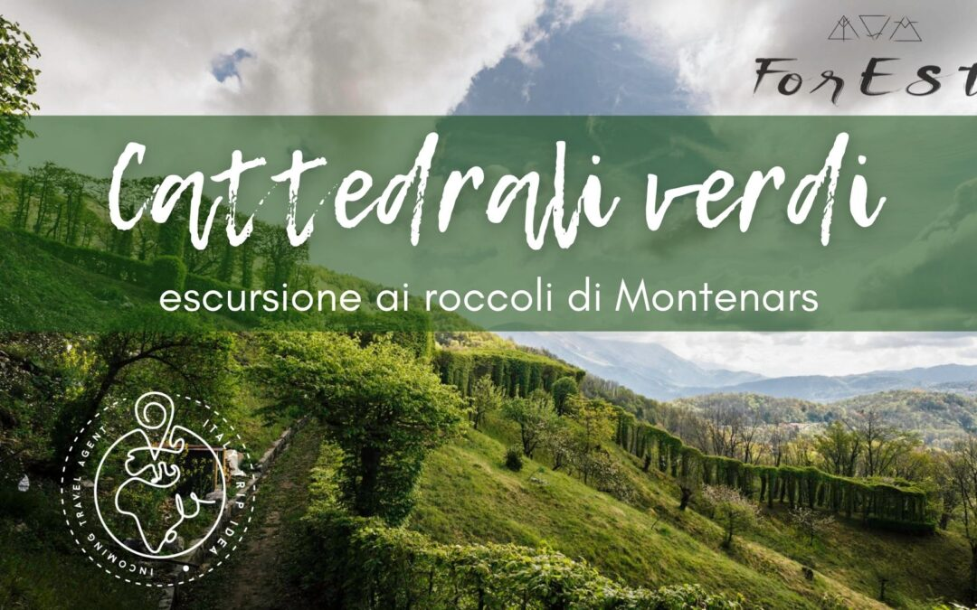 Cattedrali verdi: visita ai roccoli di Montenars